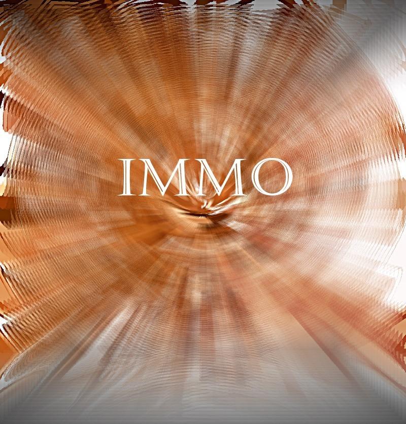 Immo : Was passt für mich – mieten oder kaufen….??