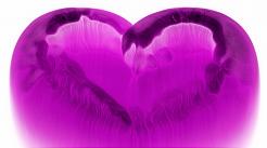 Was kommt in der Liebe? ALT`oder NEU`… ?! (weibl. Fragesteller)